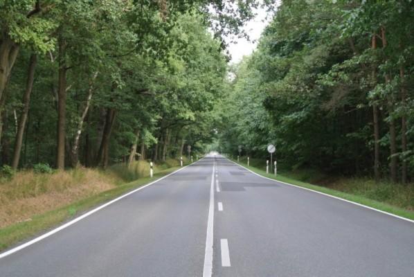 Auf dem Weg nach Boizenburg: Viel Grün - keine Kurve.