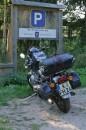 Besuch bei meinem alten Kumpel Bodo im Ewigforst.